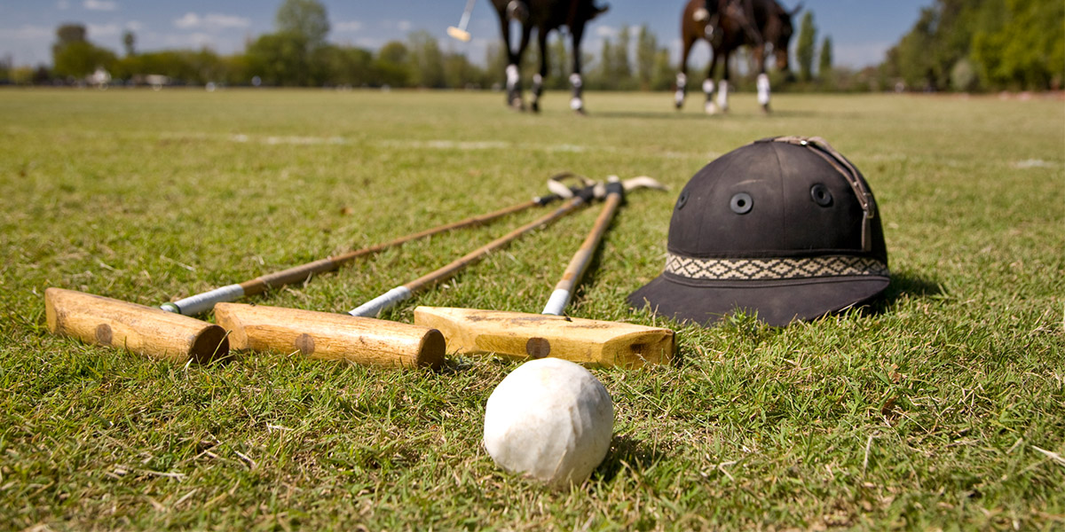 Polo clubs and ball laying on the grass